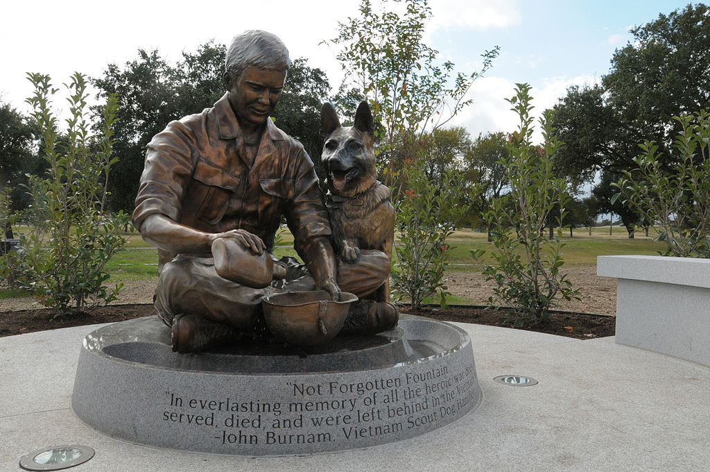 Service Dogs For Veterans In Texas