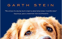 5 Books for Dog Lovers